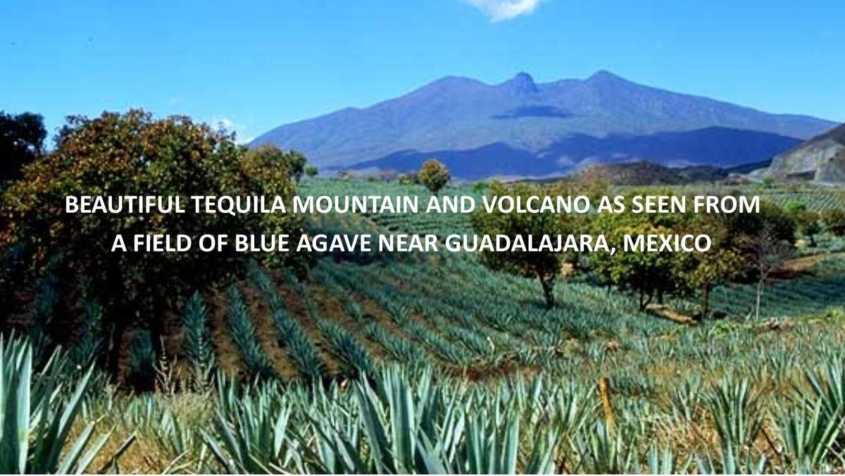 Xl_cropped_tequila_mountain.